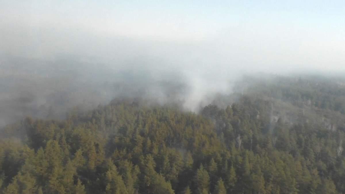Последствия пожаров на Житомирщине: как восстанавливают природные потери