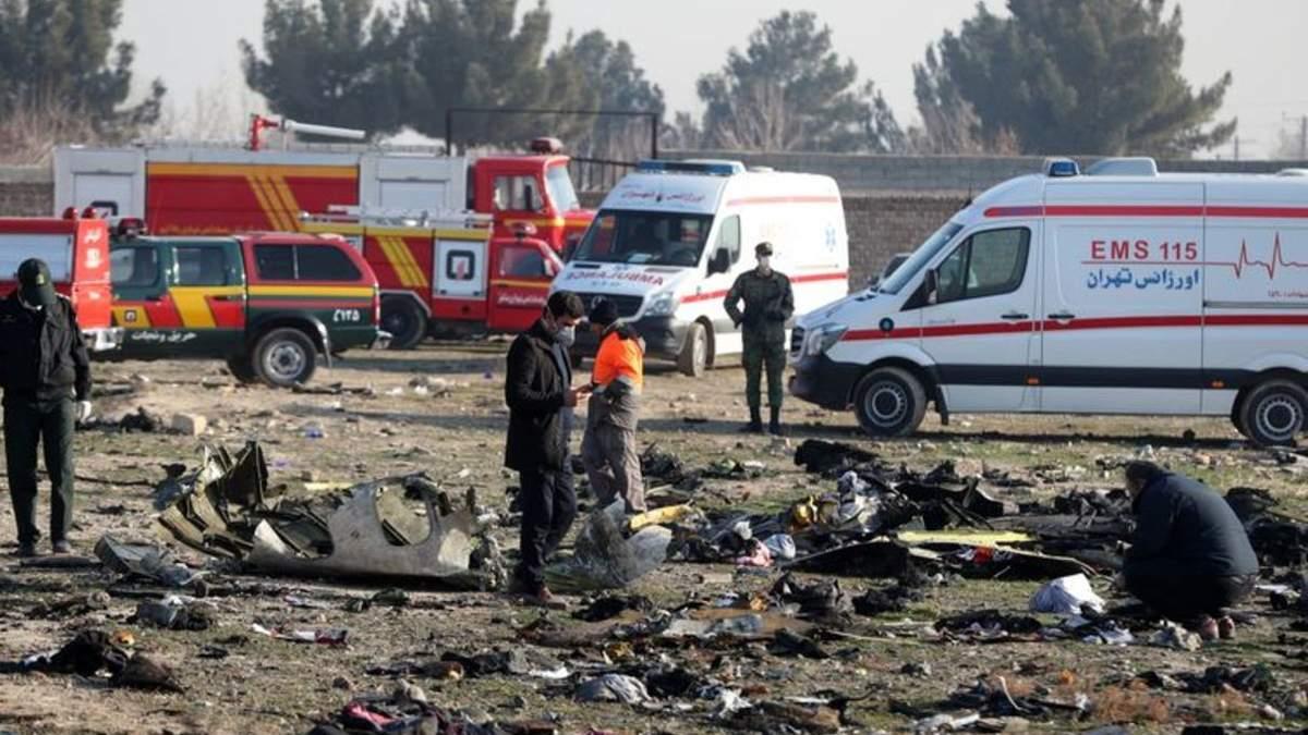 МЗС про нові подробиці розслідування авіакатастрофи літака МАУ в Ірані