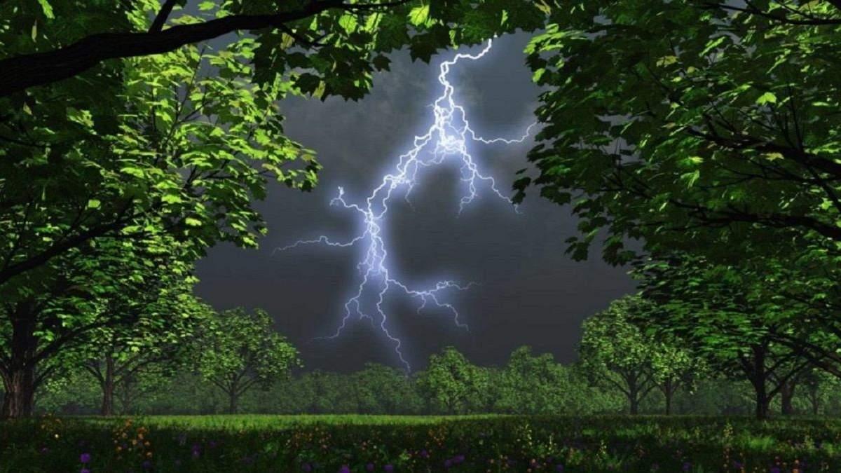 Погода 17 июня 2020 в Украине: какую погоду обещает синоптик