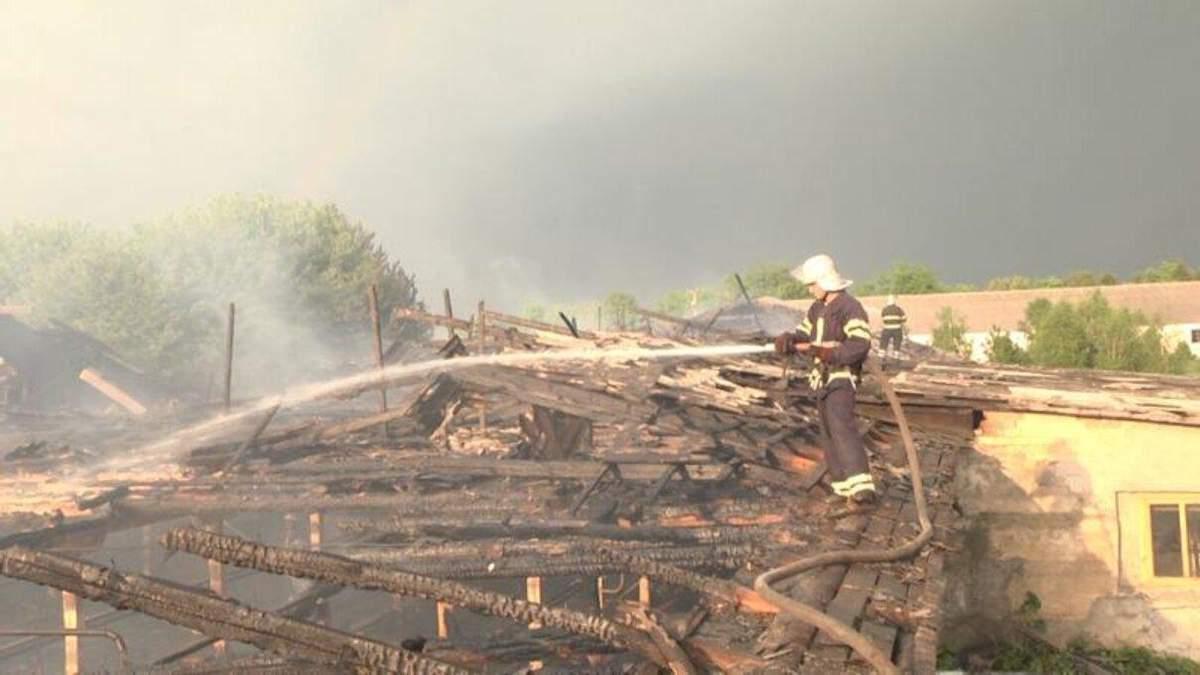 Пожежа на ферм від удару блискавки спалахнула: фото та відео