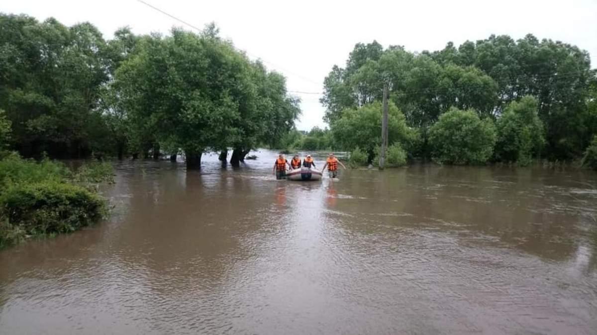 Причины наводнения на Западе Украины 2020 - Минэкологии