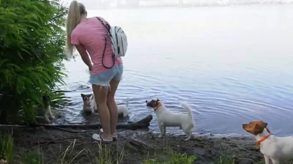 В Днепре восемь собак убирают мусор с улиц и воды: милое видео