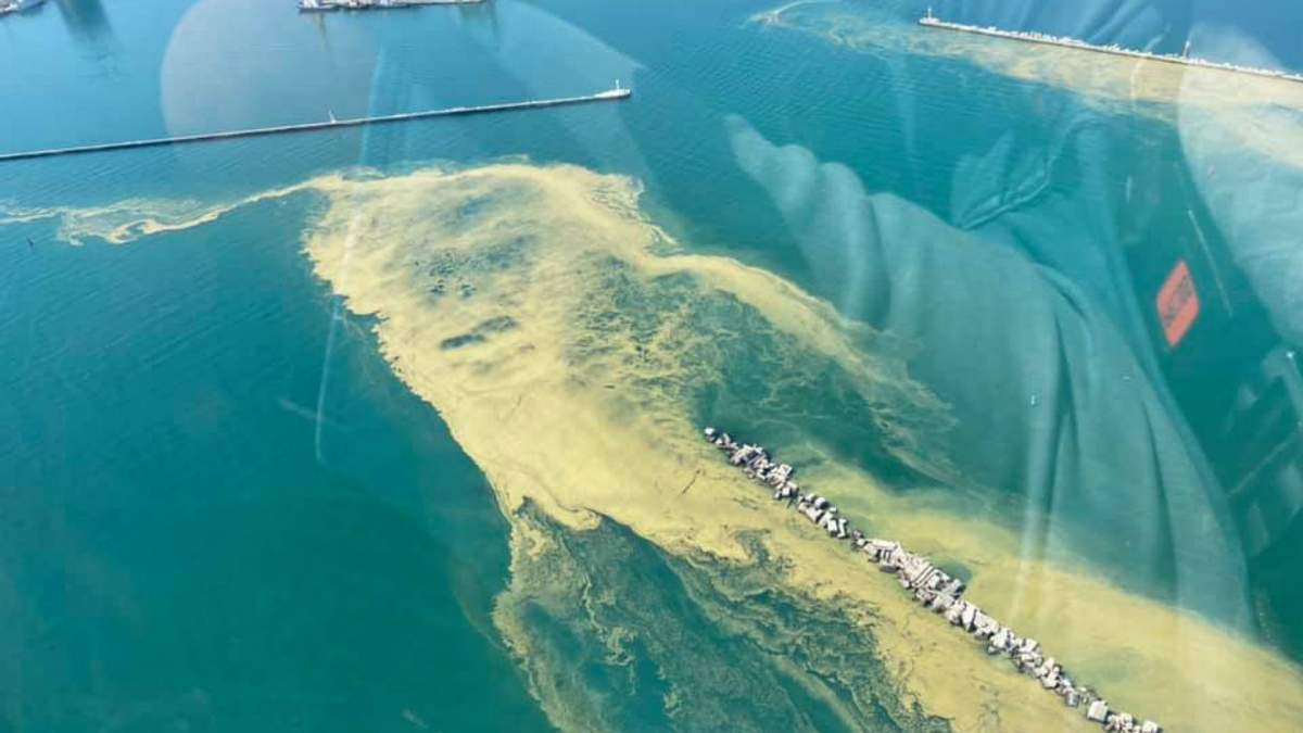 Чорне море біля узбережжя Одеси змінило колір: фото, відео