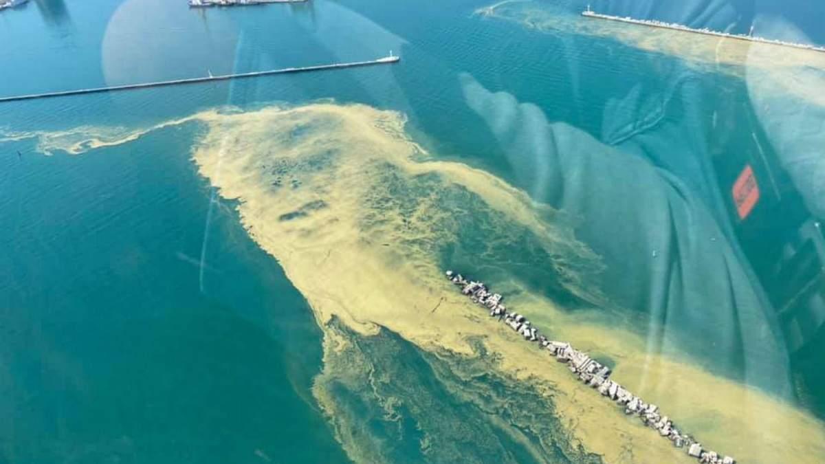 Черное море у побережья Одессы изменило цвет фото, видео
