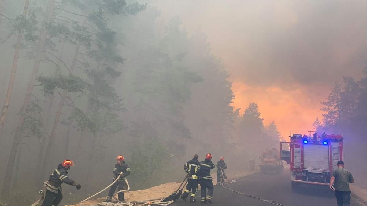 Лісова пожежа на Луганщині: є жертви - фото