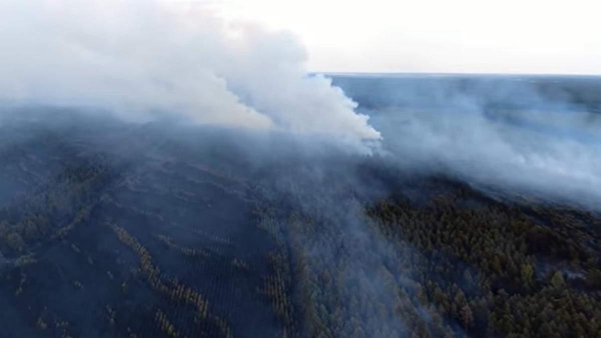 Последствия пожаров в Луганской области показали с высоты птичьего полета