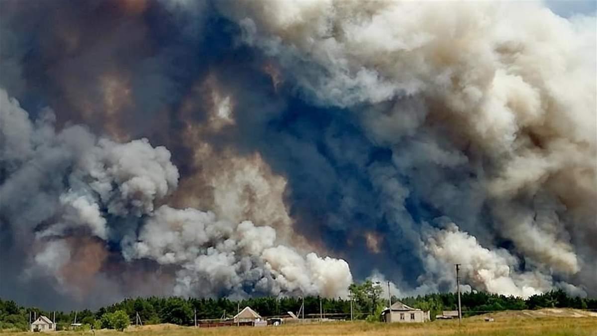 Лесные пожары в Луганской области удалось полностью потушить