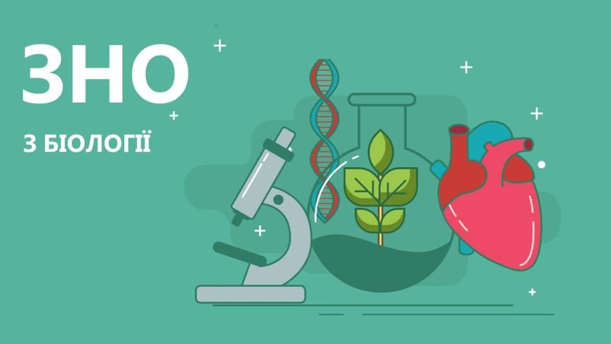 ЗНО 2020 біологія: правильні відповіді тестів