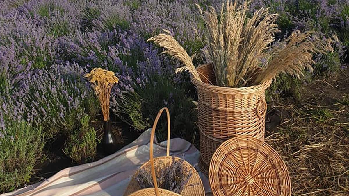 Лавандовое поле и редкие цветы: впечатляющее видео сада под Тернополем