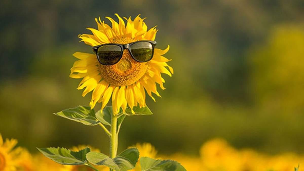 Погода 17 липня 2020 в Україні: яку погоду обіцяє синоптик