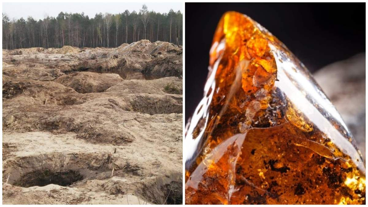 Разрешение на добычу янтаря продали на аукционе – впервые в Украине