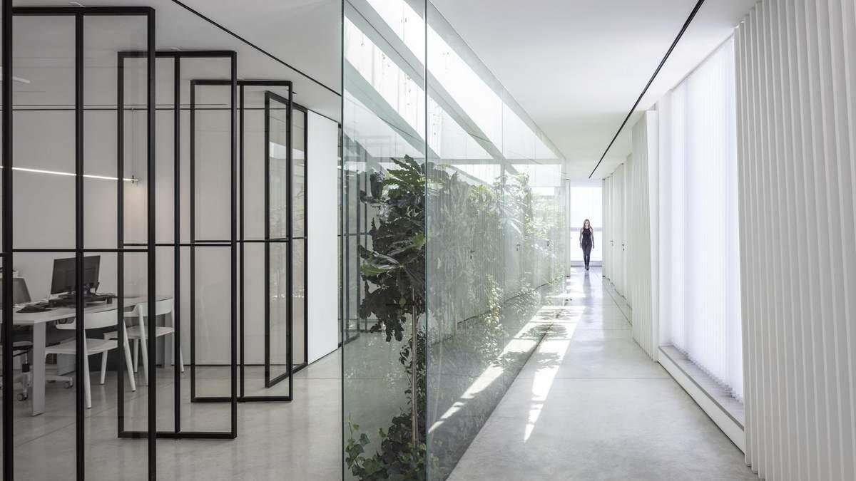 Скляна стіна додає зелені в білосніжний інтер'єр