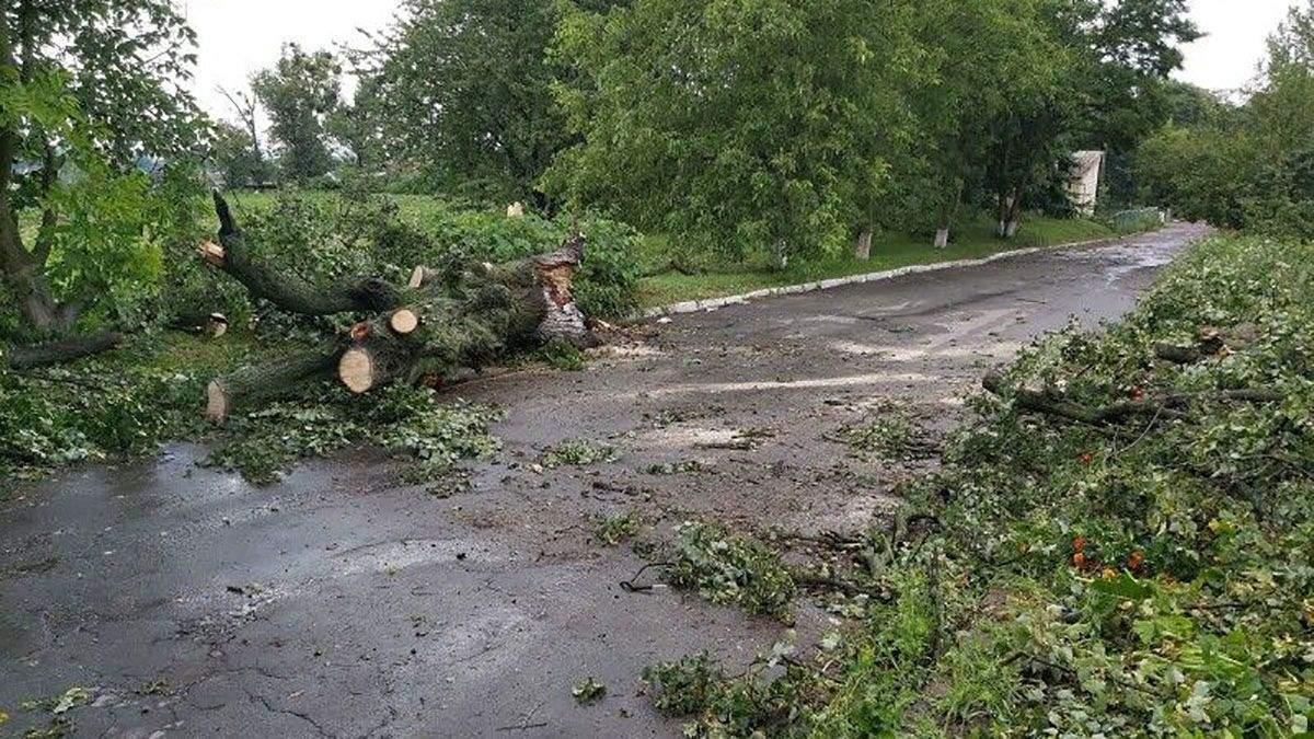 Непогода в Западной Украине: фото, видео ливни и сильного ветра