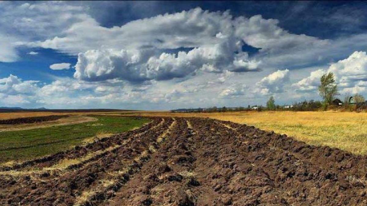 Оккупанты отобрали землю почти в 4 тысяч крымчан: детали