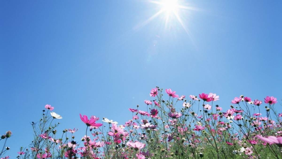 Погода 2 серпня 2020 Україна: яку погоду обіцяє синоптик