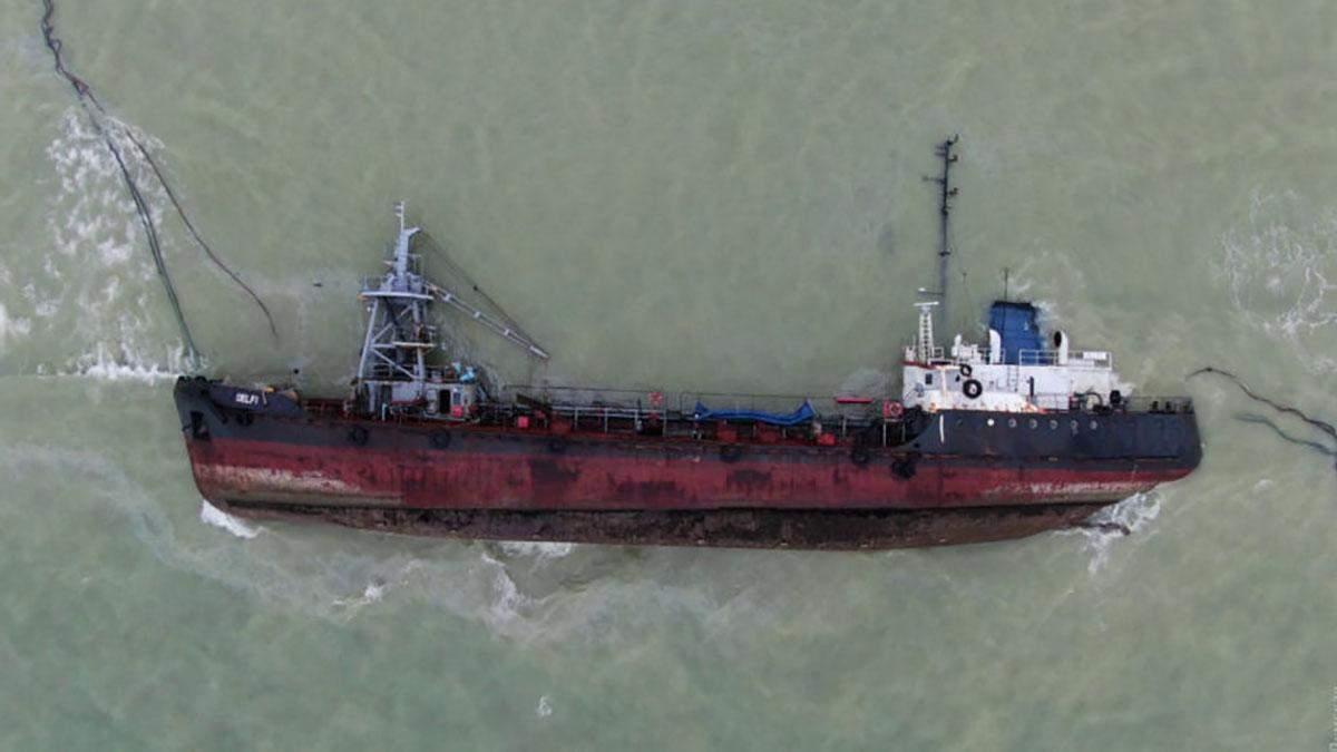 Біля затонулого танкера  Delfi в Одесі знайшли мертвого дельфіна