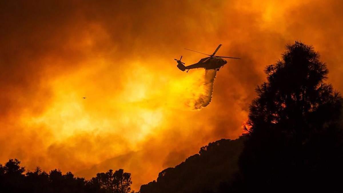 Лесные пожары в Калифорнии: все, что известно, фото и видео