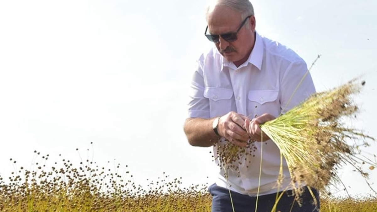 Лукашенко выступает против открытия рынка земли