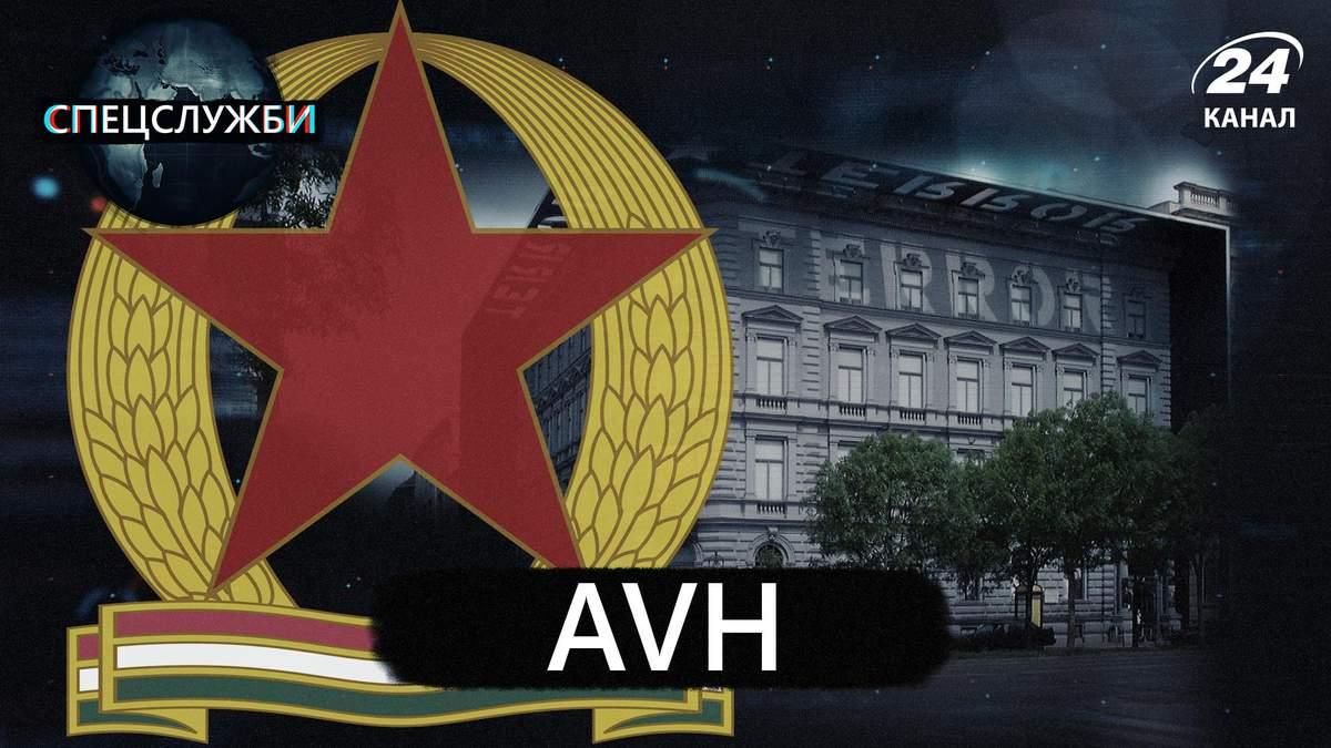 Выборы в Беларуси: явку избирателей завысили в 8 раз