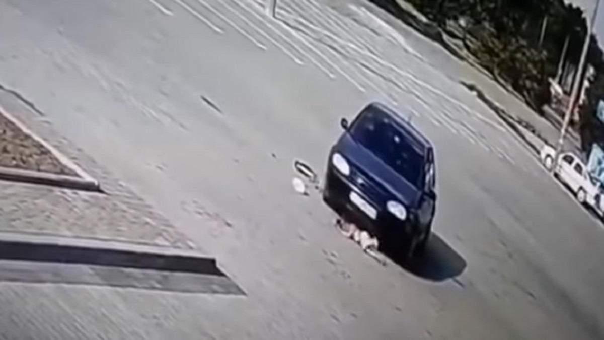 Моторошна ДТП на Львівщині