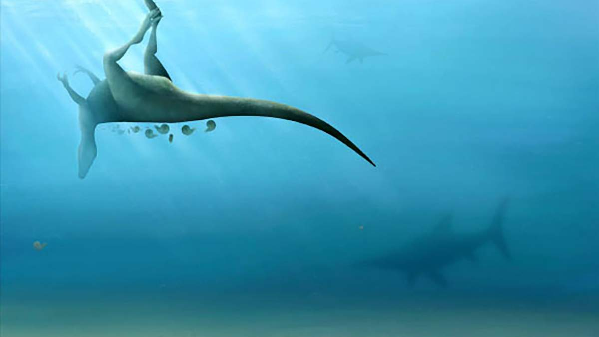 Пронизаний порожнинами і жив у воді: вчені відкрили новий вид динозавра