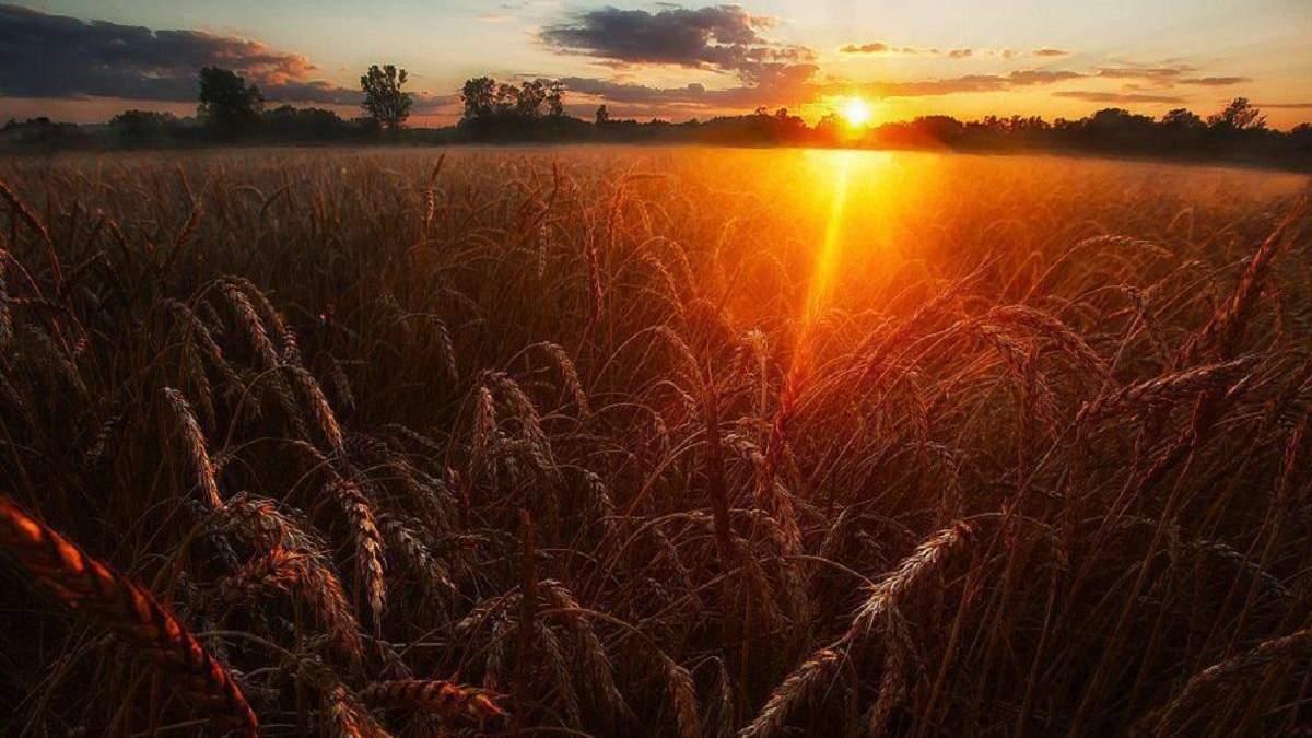 Погода 27 августа 2020 Украина: какую погоду обещает синоптик