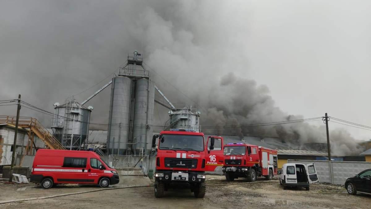 Пожежа у Тустані: загорівся свинокомплекс