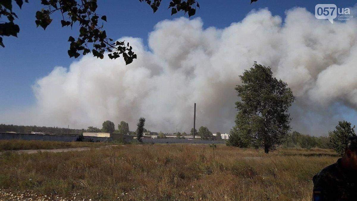 Лісові пожежі на Харківщині 2 вересня 2020: відео, фото