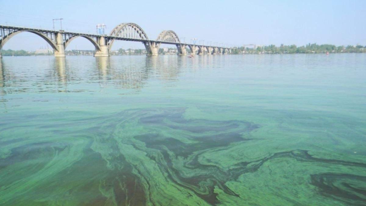 Забруднення Дніпра