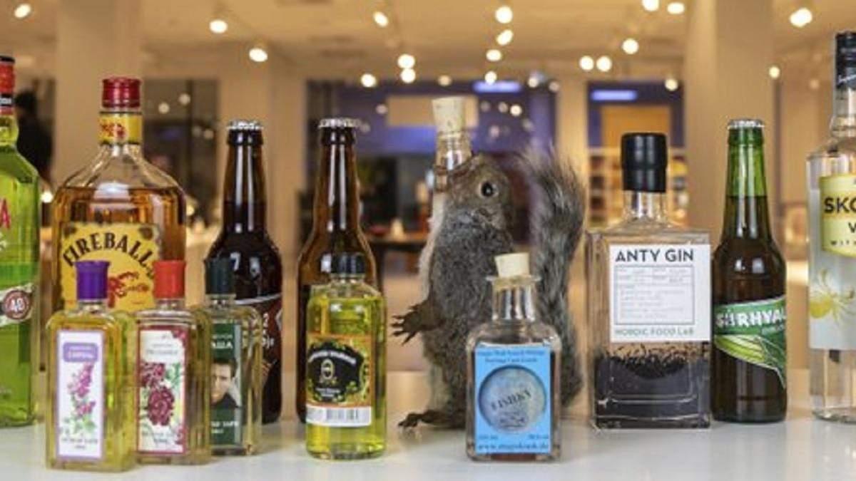 У Швеції відкрили виставку дивного алкоголю
