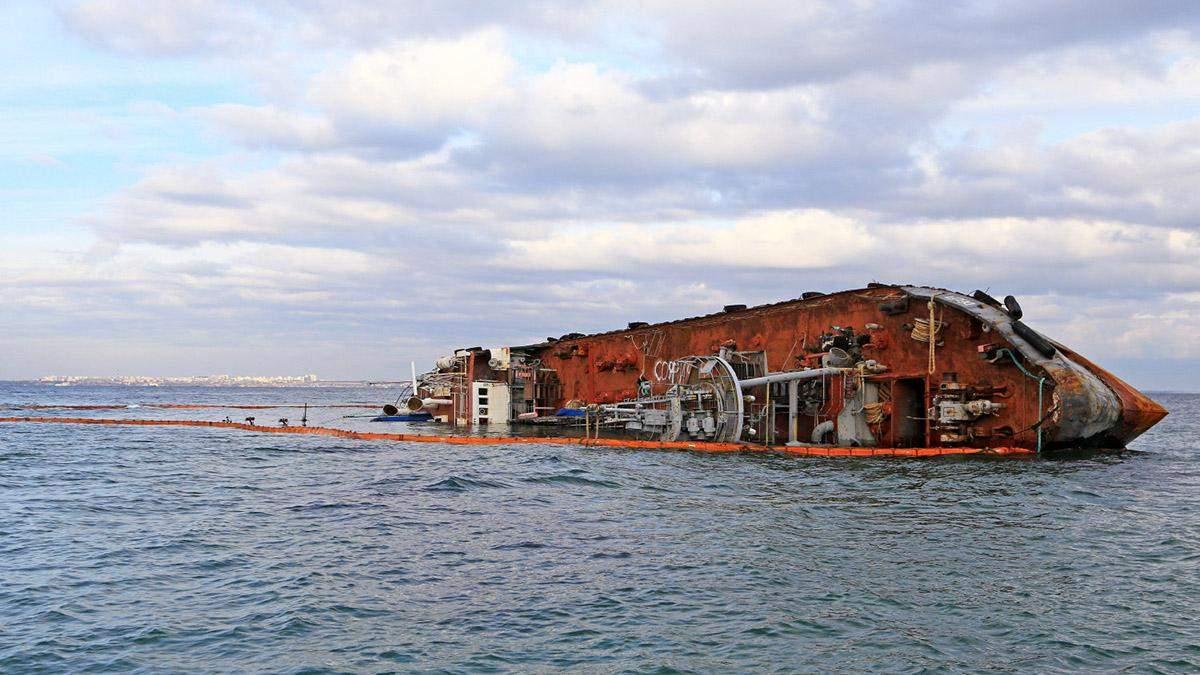 Неподалік затонулого танкера Delfi знову знайшли мертвого дельфіна