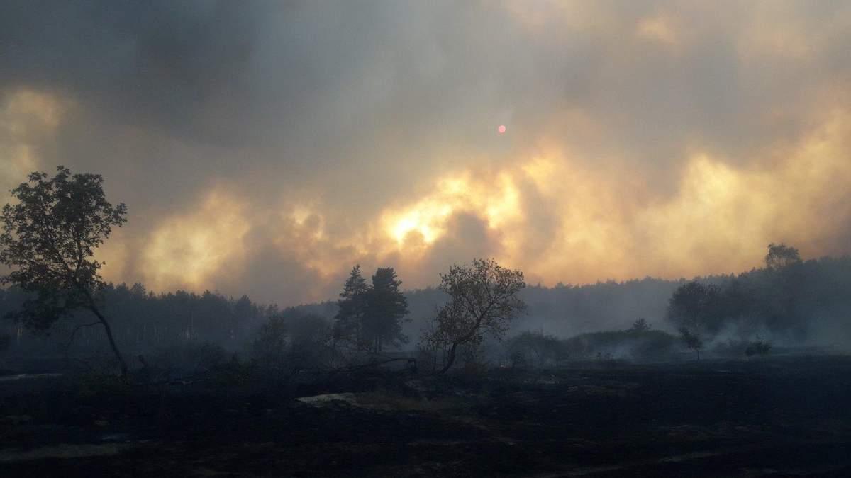 Смог убивает украинцев, но экологические активисты об этом молчат