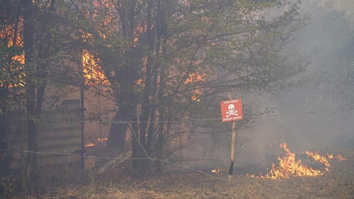 Лісова пожежа в Україні