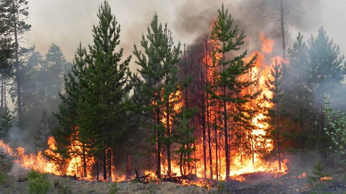 Пожежна небезпека в Україні 24 – 25 вересня 2020: перелік регіонів
