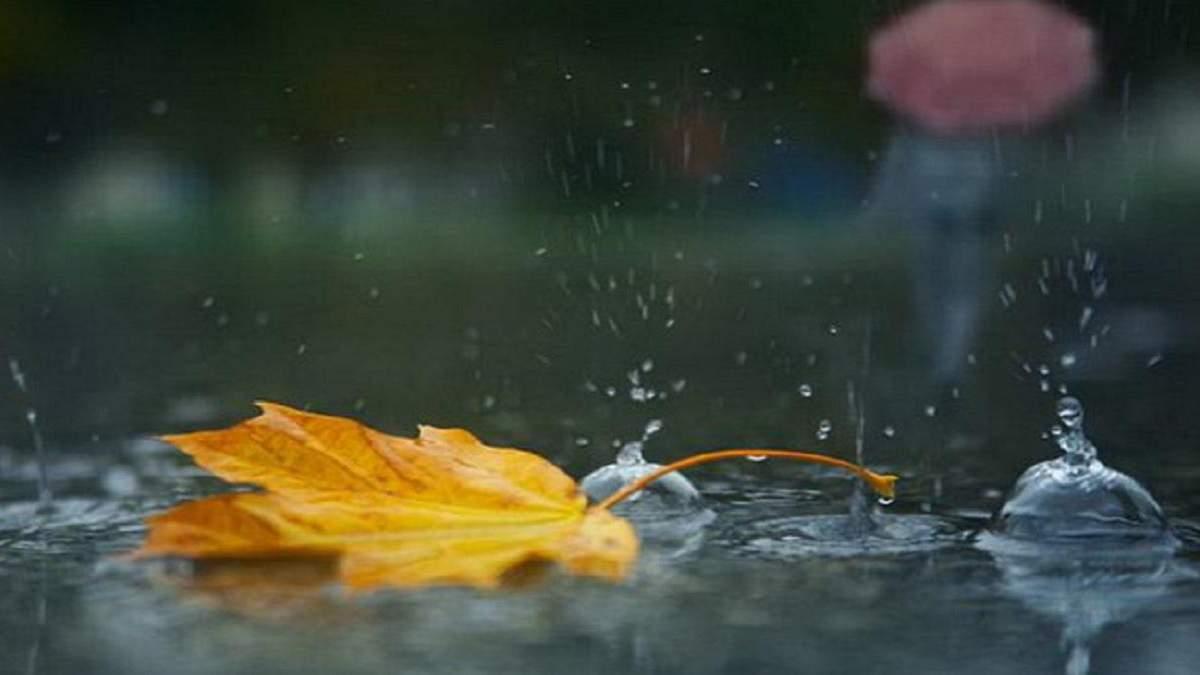 Погода 17 сентября 2020 Украина: какую погоду обещает синоптик