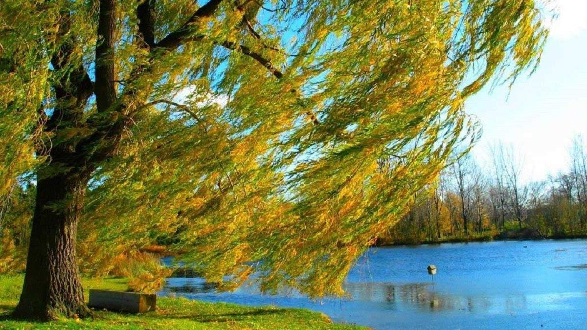 Погода 18 вересня 2020 Україна: яку погоду обіцяє синоптик