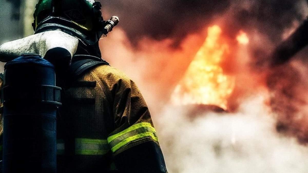 Пожар в Донецкой области: горит лес у Краматорска – фото и видео