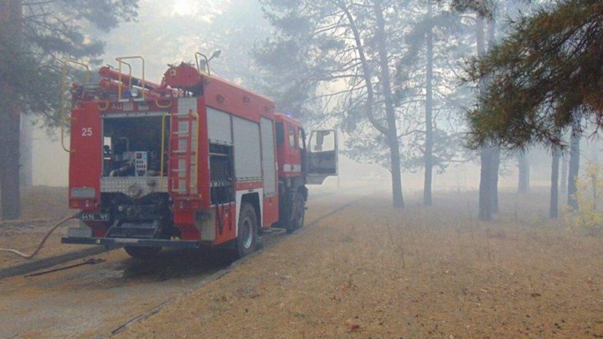 У Зеленського відреагували на пожежі на Луганщині