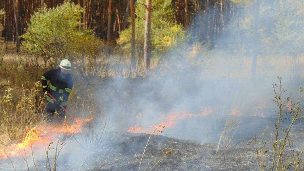 Масштабні пожежі на Луганщині: слідство не виключає версії підпалів