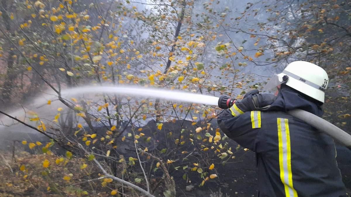Верхової пожежі на Луганщині майже немає, - голова ДСНС