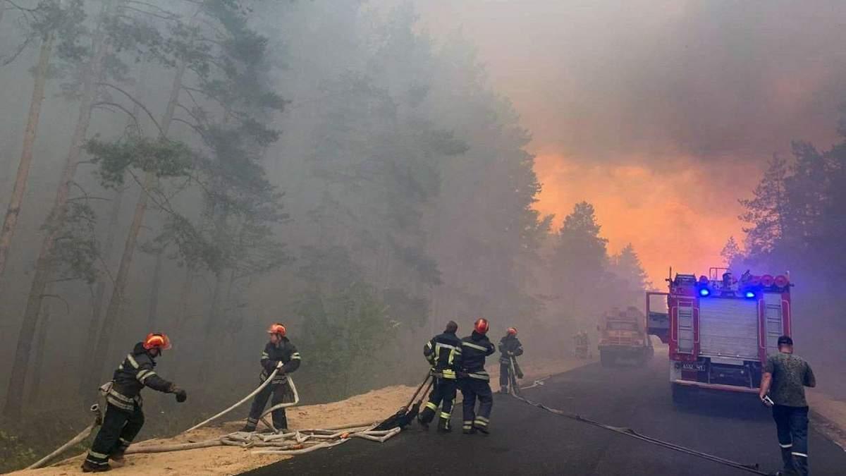 Лісові пожежі на Луганщині: слідство розглядає чотири версії