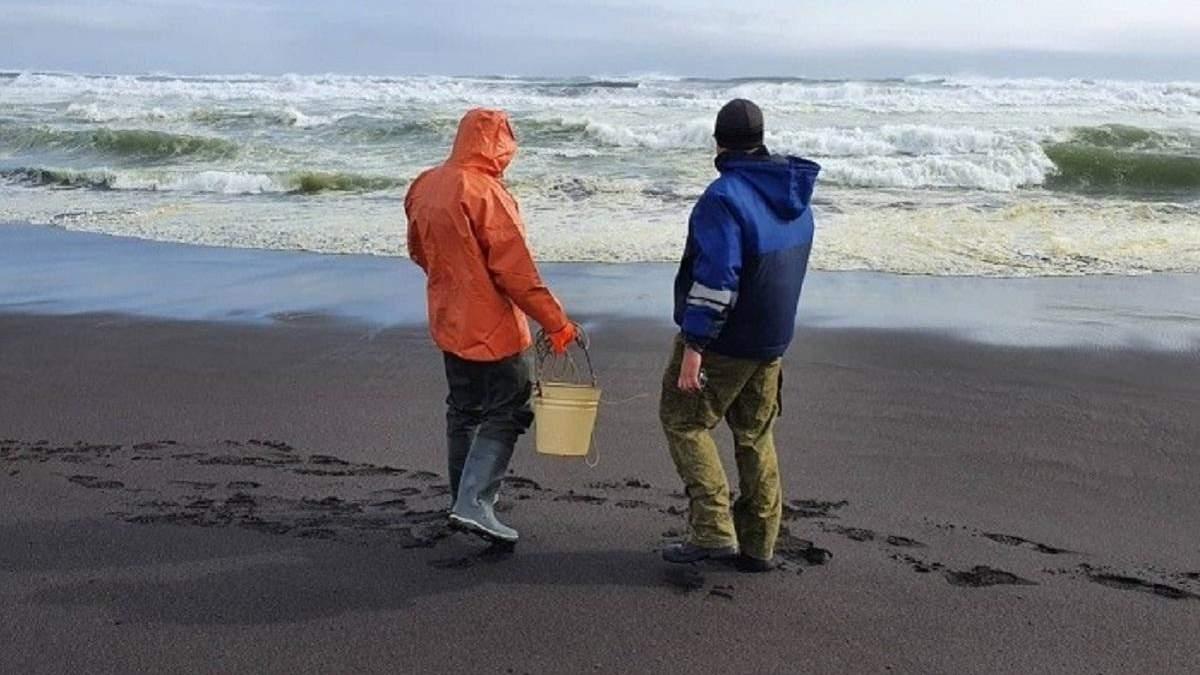 Загрязнение воды у Камчатки: что известно об утечке нефти в России