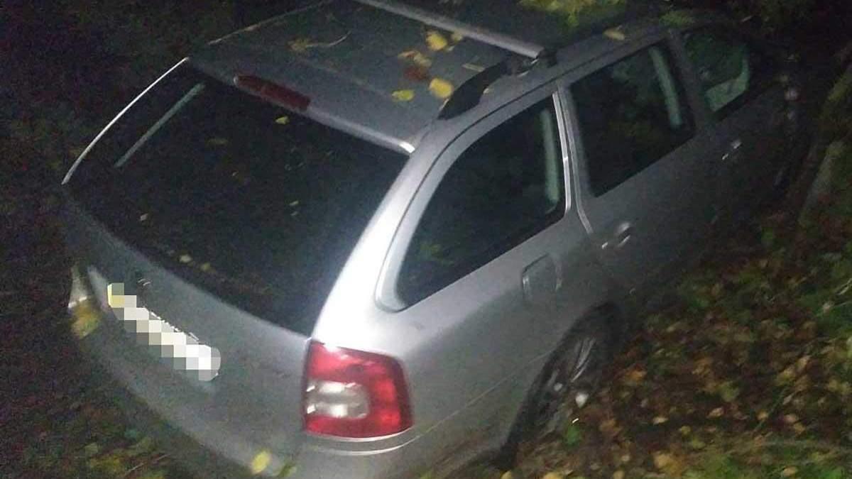 Під Вінницею дерево впало на авто 8 жовтня 2020: водій загинув