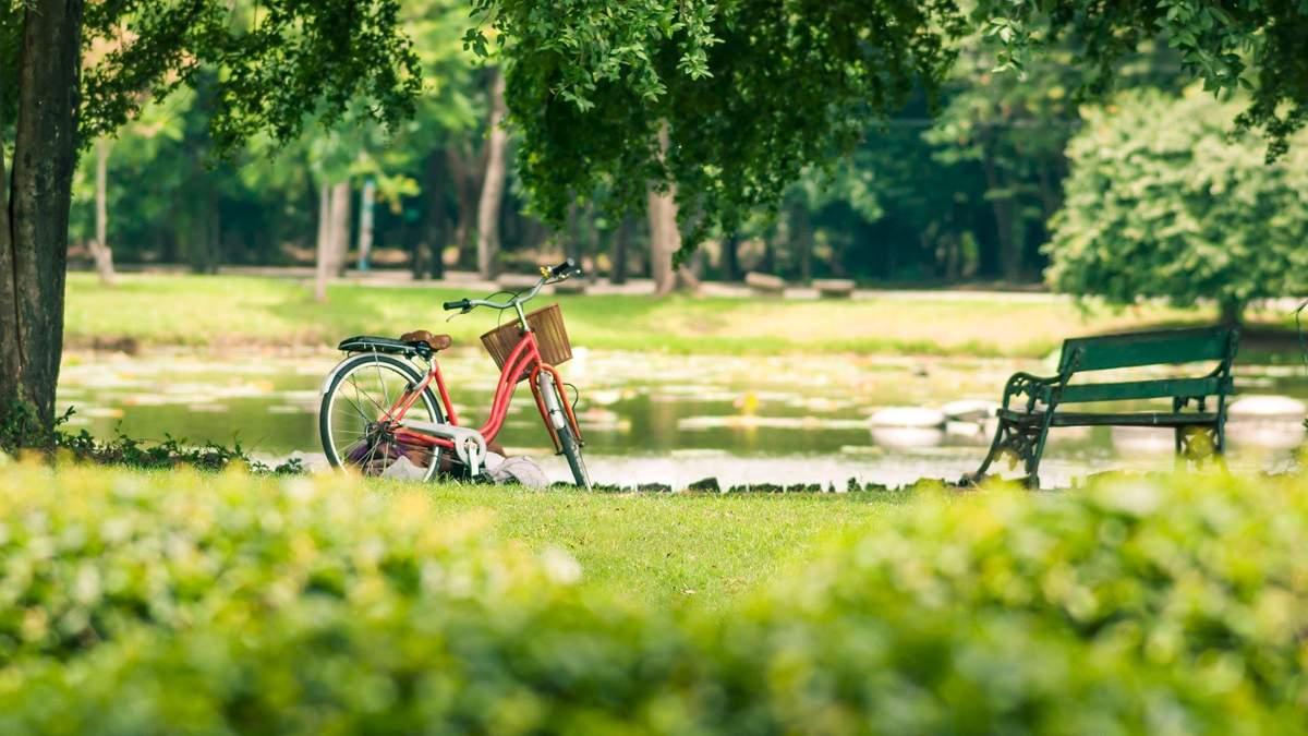 У Львові виділили 80 мільйонів гривень на парки: на що витратили гроші