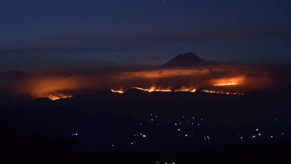 На схилах Кіліманджаро не можуть загасити масштабну пожежу: відео