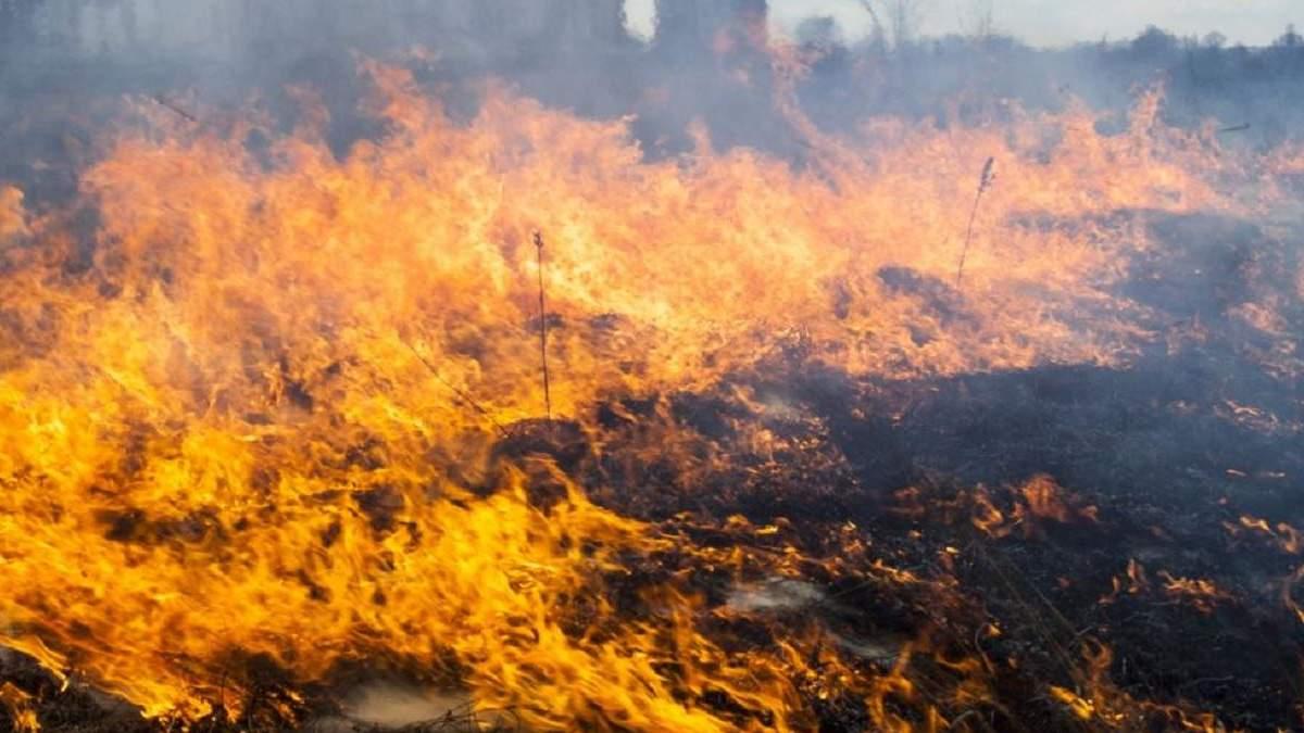 Пожежна небезпека в Україні 17 жовтня 2020: перелік регіонів