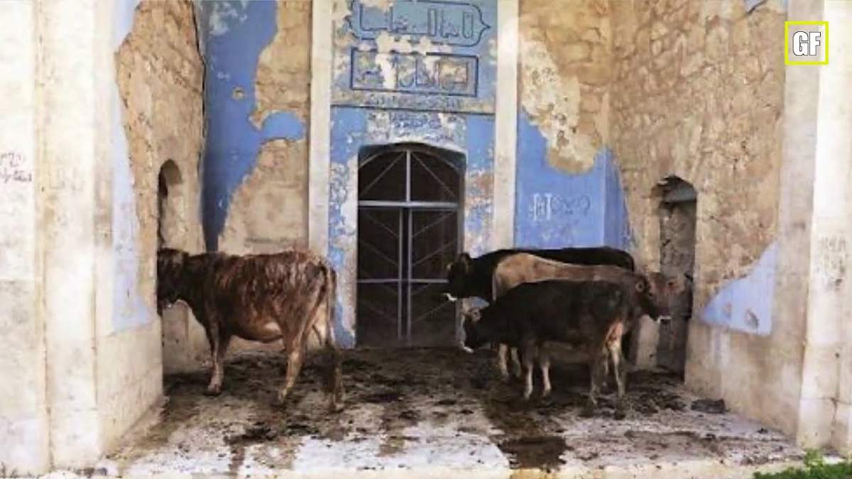 Война в Нагорном Карабахе: Армения превратила мечети в свинарники