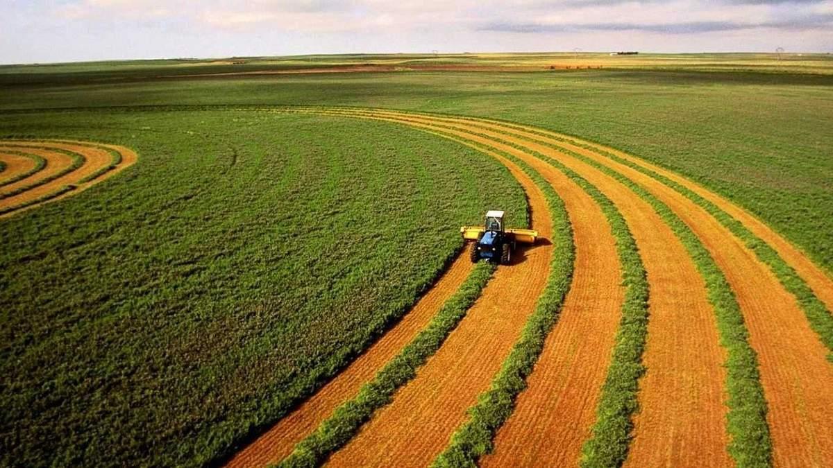 Глава Госгеокадастра назвал необходимые шаги для запуска рынка земли
