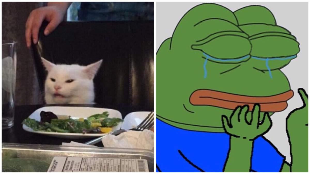 Кіт за столом та зелене жабеня: меми, які викликали фурор в інтернеті