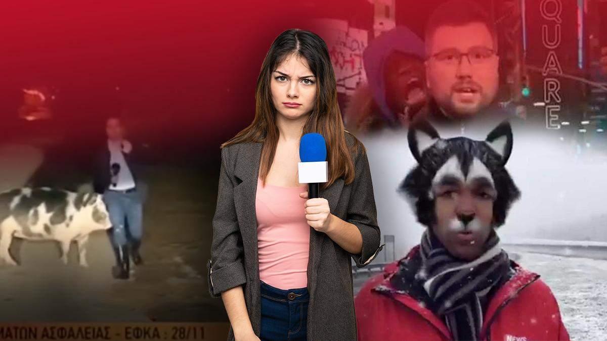 Які курйози траплялися з журналістами та телеведучими